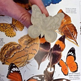 Kristen Kieffer Monarch butterfly stamp